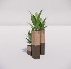 植物_005_室内设计模型